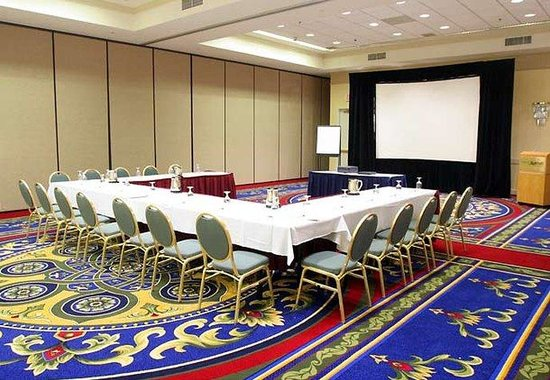 Detroit Metro Airport Marriott: Meeting Room