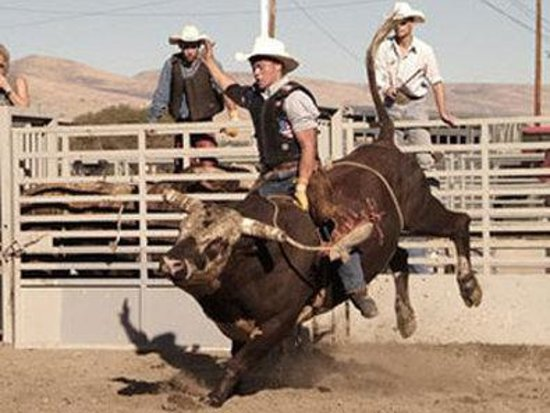 BEST WESTERN PLUS Lincoln Inn: Ellenburg Rodeo