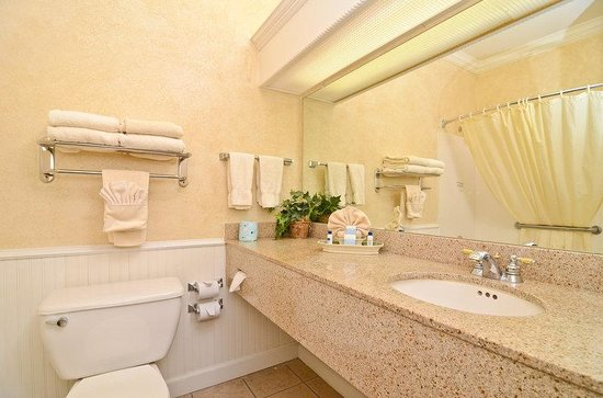 BEST WESTERN Dinosaur Valley Inn & Suites: Guest Bathroom