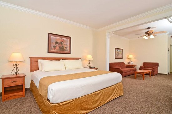 BEST WESTERN Dinosaur Valley Inn & Suites: Mini-Suite
