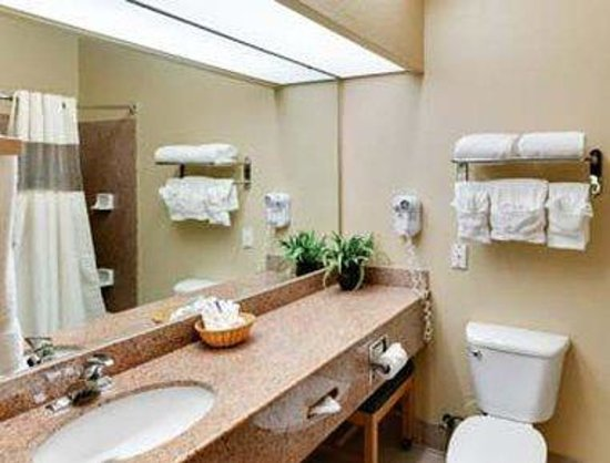 Hawthorn Suites by Wyndham Corpus Christi: Bathroom
