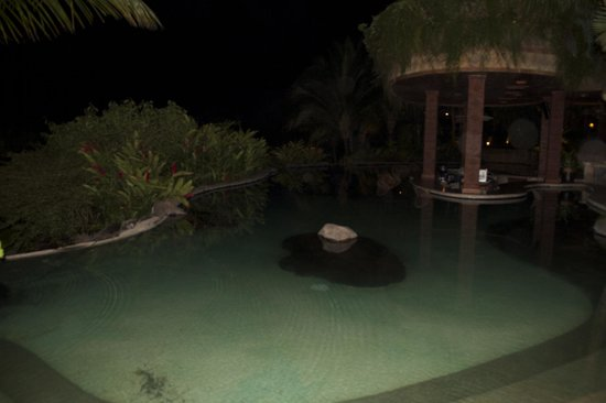 Arenal Springs Resort and Spa: Hot spring and pool bar