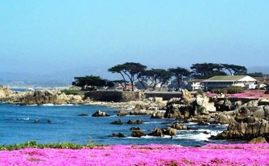 Borg's Ocean Front Motel: Our Spectacular Location at Lover's Point on Monterey Bay