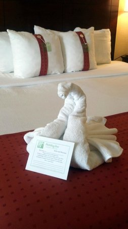 Holiday Inn Nashville-Vanderbilt (Downtown): Swan on the bed