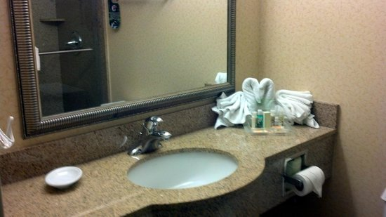 Holiday Inn Nashville-Vanderbilt (Downtown): Great amenities
