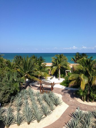 Rosewood Mayakoba: views from the rooftop