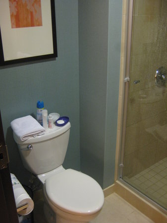 Hyatt Place Seattle/Downtown: A room with just the shower and toilet inside
