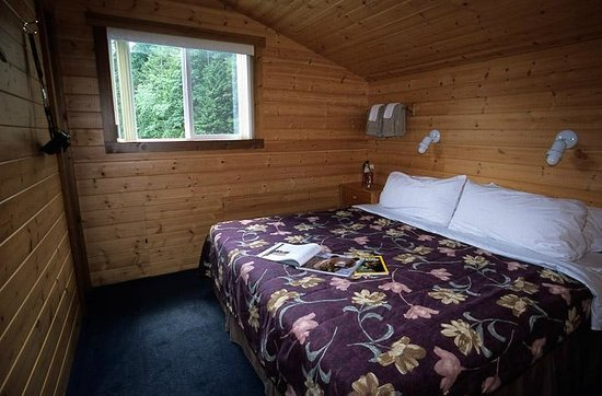 Photo of Great Bear Lodge Port Hardy