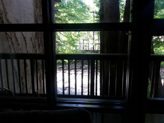 Riverhouse Motor Lodge: View from bed in room