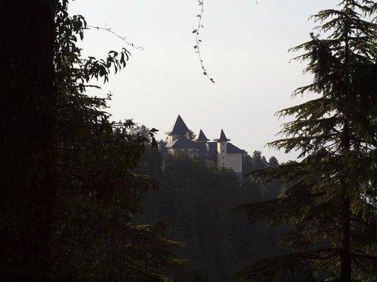 Wildflower Hall, Shimla in the Himalayas: The view of Wildflower Hall from the cedar forest