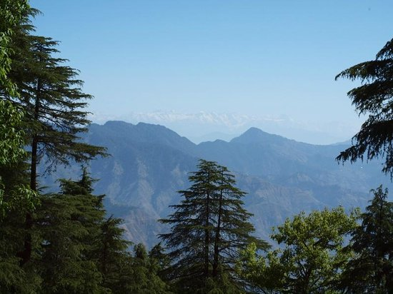 Wildflower Hall, Shimla in the Himalayas: Himalaya mountains view from the Wildflower Hall