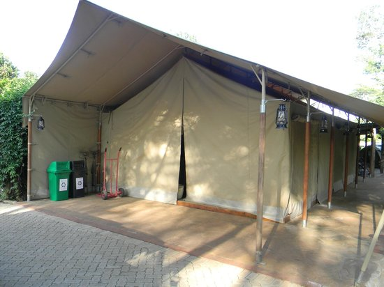 Wildebeest Eco Camp: Tent accommodation