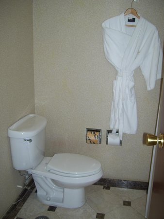 Sheraton Maria Isabel Hotel and Towers: bathroom and robe