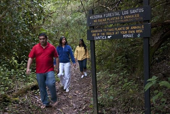 San Gerardo de Dota, Costa Rica: Trails in our Private Reserve