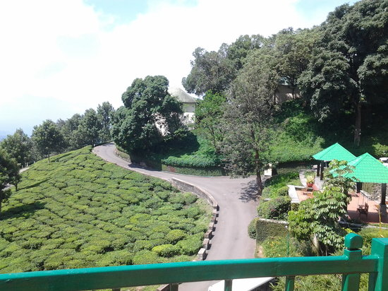 Club Mahindra Lakeview Munnar: view from the balcony