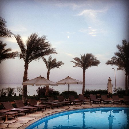 Dahab Paradise: The pool