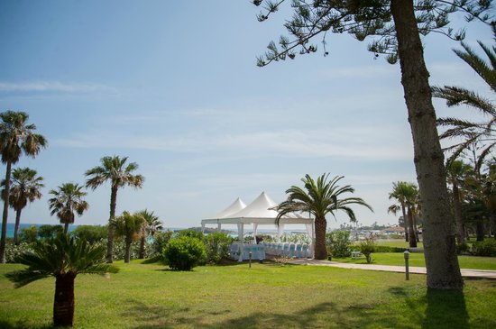 Nissi Beach Resort: grounds where we got married