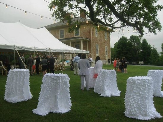 The Inn at Vaucluse Spring: Wedding outside of the Manor House