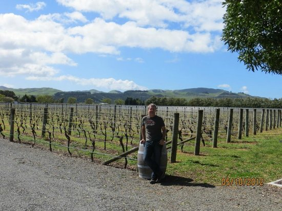 Martinborough, New Zealand: viñedos