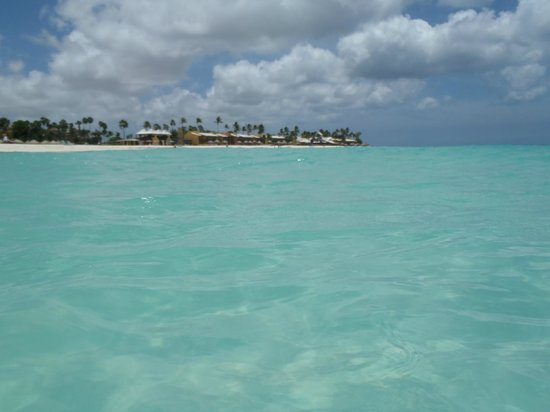 Divi Aruba All Inclusive: Sea