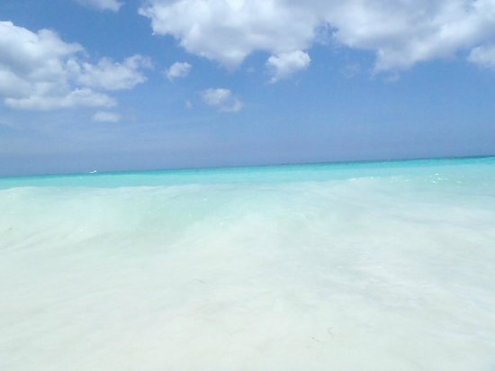 Divi Aruba All Inclusive: Clearest sea we have ever seen!