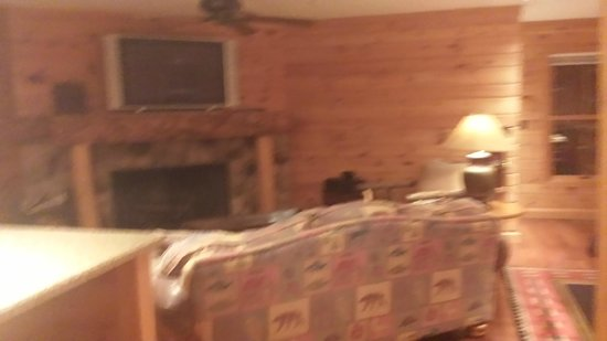Manitowish Waters, WI: Liviing room in Lily Pad Upper