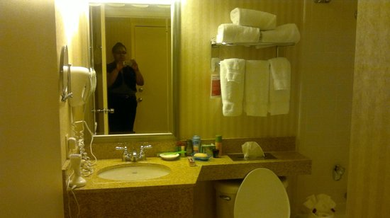 Ramada Plaza Hartford Hotel: Another view of bathroom.
