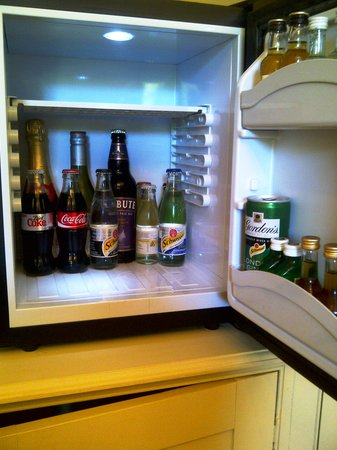 Gulworthy, UK: Fridge (minus the milk !)