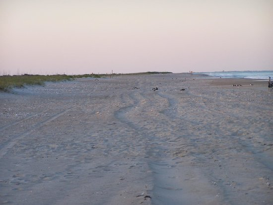 South core beach cape lookout for Harkers island fishing report