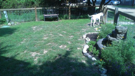 Cypress Creek Cottages: Dog park (on property)