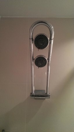 Clinton Hotel South Beach: good shower head