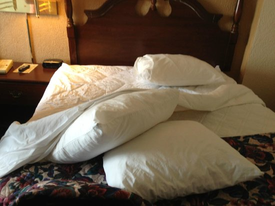 Ramada Downtown Cincinnati: pillow thrown about in room upon check in, bed not completely made