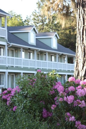 Photo of Baechtel Creek Inn & Spa, An Ascend Collection Willits