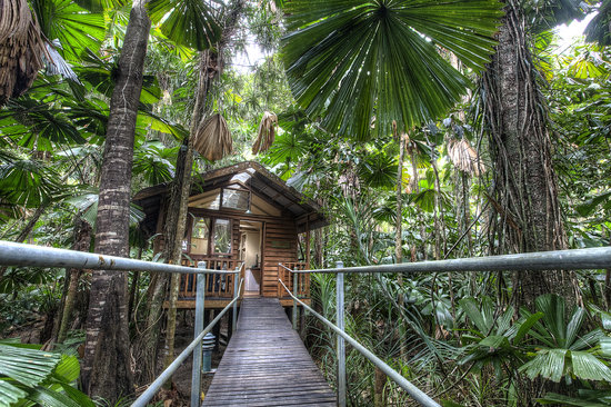 ‪Daintree Wilderness Lodge‬