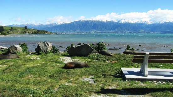 Kaikoura, New Zealand: The scenery was breathtaking