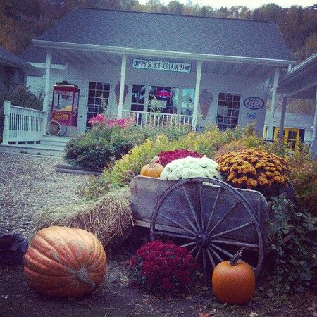 Pumpkin Patch Egg Harbor Business Association