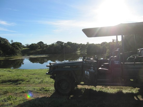 Sibuya Game Reserve & Tented Camp: Morning drive