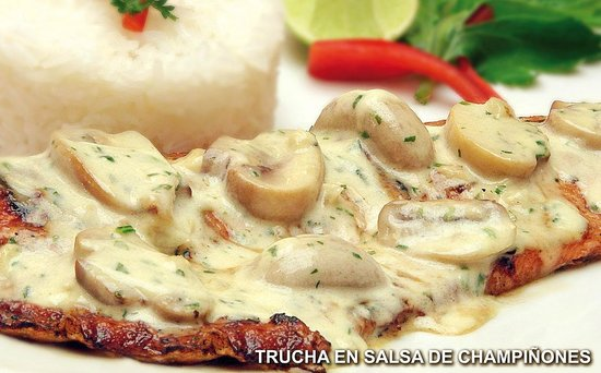 Trucha a la parrilla en salsa de champi ones picture of for El salas restaurante