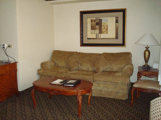 Radisson Hotel San Diego - Rancho Bernardo: Couch.  Oddly postioned. The TV is to the right of the couch.
