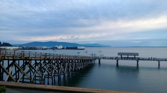The Chrysalis Inn & Spa: Bay view from hotel
