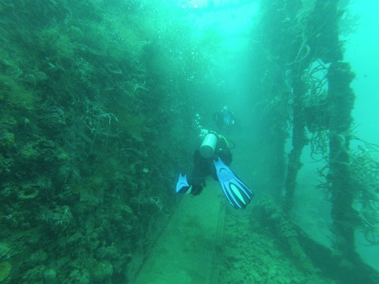 Chindonan Island Resort & Divecenter: wreck diving