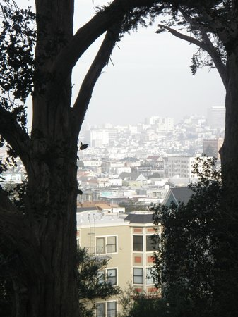 Inn on Castro: The neighbourhood view!
