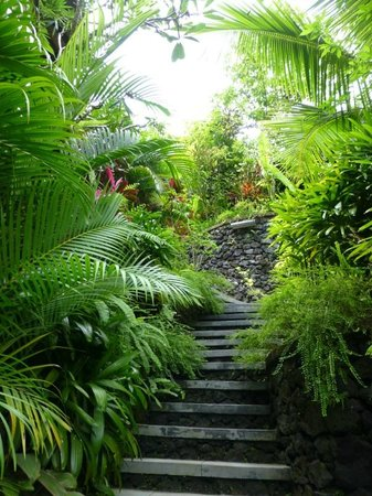 Bidadari Private Villas & Retreat - Ubud: Private rainforest setting
