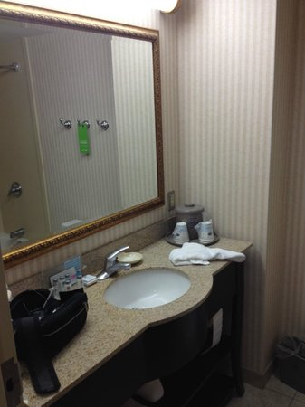 Hampton Inn Raynham-Taunton: Bathroom