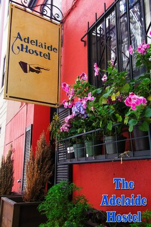 Adelaide Hostel: Our front entrance