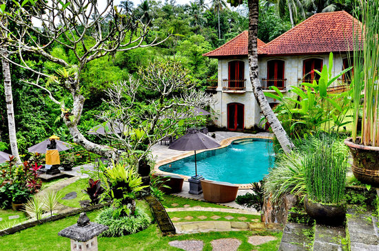 Pool area garden picture of bali villa ubud ubud for Garden pool villa ubud