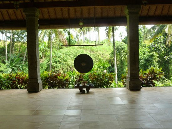 ONEWORLD retreats Kumara: Yoga shala