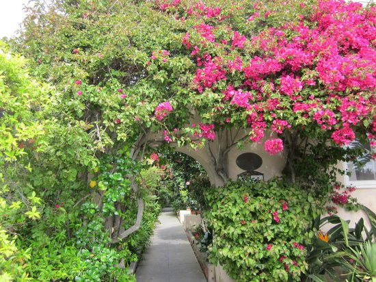 The Bed and Breakfast Inn at La Jolla: Picturesque entry