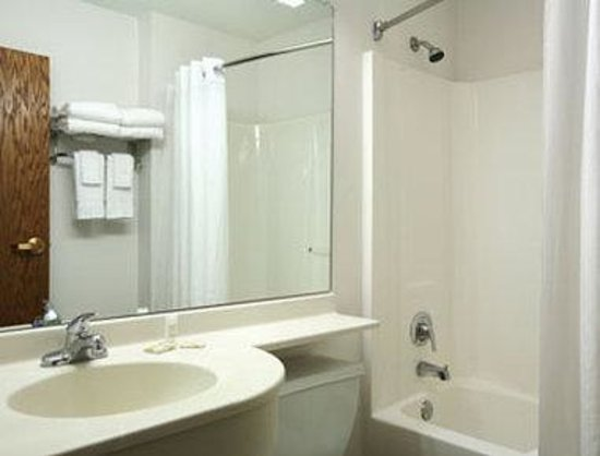 Microtel Inn & Suites by Wyndham Springfield: Bathroom