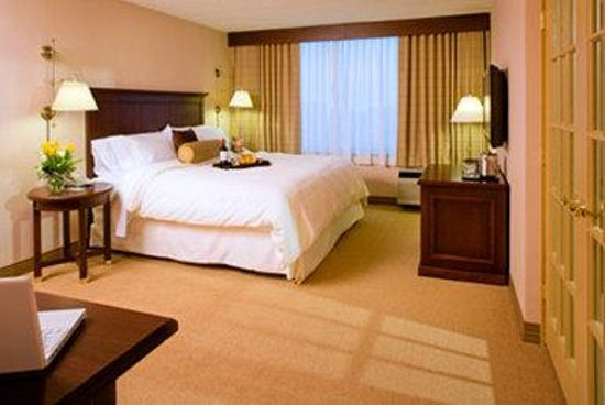 Sheraton Philadelphia University City Hotel: Suite